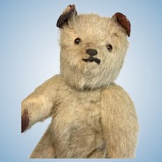 Fully Jointed Small Antique Teddy Bear