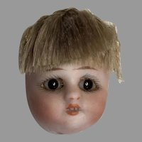 Tiny Antique German Bisque Glass Eye Pin Cushion Doll Head