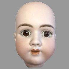 Large German Handwerck 99 Pierced Ears DEP Bisque Doll Head