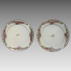 Extremely RARE Pair of 19th C Enamelware Plates with Hand-Painted Bird Decor