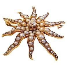 Large Starburst Pearl Pin