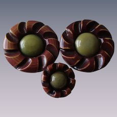 Celluloid Flower Coat Buttons Vintage 1930s Set Huge Size
