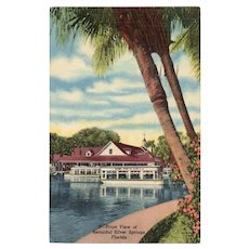 1954 Front View of Beautiful Scenic Silver Springs Florida Linen Postcard