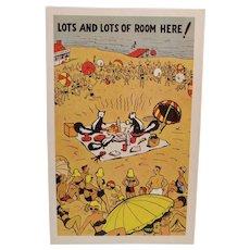 1940's Skunks At The Beach Vintage Humor Postcard