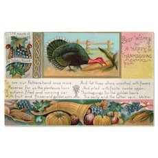 1912 Vintage Embossed Thanksgiving Postcard Turkey & Cornucopia