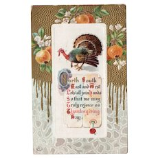 1911 J Herman Vintage Embossed Thanksgiving Postcard - Turkey Fruit Gold Details