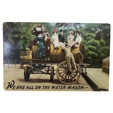 Early 1900's We Are All On The Water Wagon Vintage Postcard
