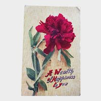 ca 1910 A Wealth Of Happiness To You Vintage Postcard