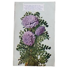 ca 1910 Postcard with Lavender Chrysanthemums & Poem