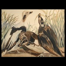 """Carroll Sargent Tyson, Jr. """"Old Squaws"""" Lithograph, c1934"""