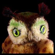 Tiniest Sister Steiff Wittie Owl Bird All ID