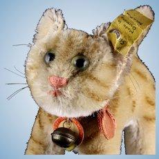 Rare Little Sister Steiff Brown Tabby Stripes Tapsy Cat Kitten All ID