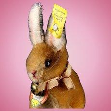 Tiny Brother Steiff Seated Rabbit Bunny Hase (pre-Sonny) All ID Near Mint