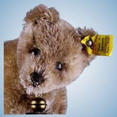 Baby Brother Rare Steiff Bear Cub Jungbaer 2 IDs