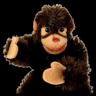 Rare Baby Brother Steiff Tiny 5xJointed Jocko Ape Chimpanzee (not monkey!) Fantastic Coloring IDs