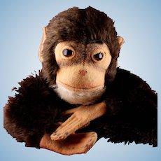 Steiff Jocko Chimpanzee (not Monkey!) Hand Puppet