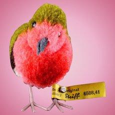 """Big"" Sister Steiff Wool Miniature PomPom Robin Bird Gorgeous Coloring All ID"