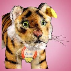 """Rare Earliest Model Big Brother Steiff Stalking Tiger Cub """"Jungtiger"""" Wild Cat All ID"""