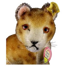 Rare Tiny Steiff Seated Mohair Jungloewe Lion Cub Wild Cat All ID 1956-1958 Only