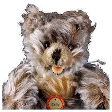 Earliest Model Adorable Baby Brother Steiff 5xJointed Zotty Teddy Bear ID