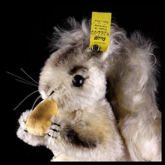 Rare Largest Brother Steiff Gray Possy Squirrel Eichhorn Gorgeous Coloring 2 IDs