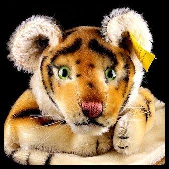 Rare SWEET Earliest Model Steiff Tiger Wild Cat Hand Puppet 2 IDs