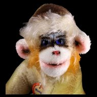 Gorgeous Little Brother Rare Steiff Mungo Monkey Amazing Colors ID