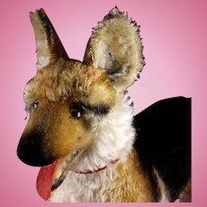 BIGGG Brother Steiff Rare Arco German Shepherd Puppy Dog ID