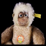Rare Steiff BIG BROTHER Gibbon Ape All ID 1962-1966 Only Talks!