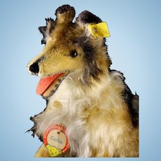 Rare Big Brother Steiff '60s Seated Collie Dog All ID