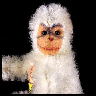 RARE 11 CM Steiff White Jocko Chimpanzee (Not Monkey!) All ID Only One Year!
