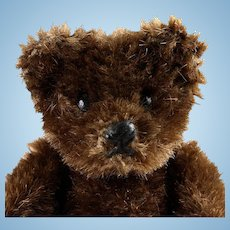 Rare Tiniest Steiff Dark Brown 5xJointed Original Teddy Bear