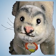 Cute Baby Brother Steiff Robby Seal ID