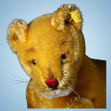 Rare and Beautiful Steiff 1950s Large 5xJointed Mama Lioness Wild Cat 2 IDs ROARS!