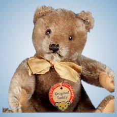 Big Brother Steiff 5xJointed Caramel Original Teddy Bear 2 IDs