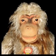 Rare Early HUGE Steiff Seated Coco Baboon 2 IDs (Red-Printed Chest Tag) plus US-Zone Flag