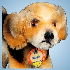 Rare Adorable Tiny Brother Steiff Biggie Beagle Puppy Dog Gorgeous Coloring ID 1958-1961 Only