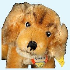 Tiny Sister Steiff Gold Cockie Cocker Spaniel Puppy Dog All ID