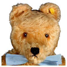 Rare Early-Post WWII Steiff Gold 43-cm 5xJointed Original Teddy Bear 2 IDs