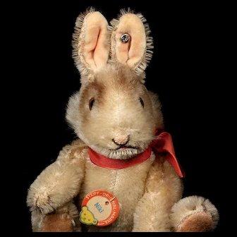 Rare Tiniest 5xJointed Steiff Niki Hase Rabbit Bunny 2 IDs