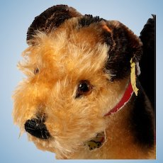 Middle Brother Steiff Rare Terry Airedale Terrier Puppy Dog All ID Us-Zone