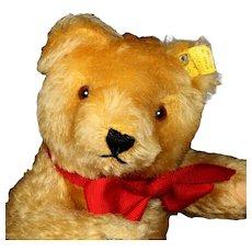 Earliest Series 1950s Steiff 5xJointed Gold Original Teddy Bear 2 IDs