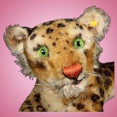 Rare Earliest Model Steiff Large Reclining Leopard Wild Cat 2 IDs