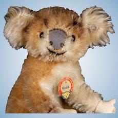 Rare Steiff Baby Koala (NOT) Bear 2 IDs 1955-1961 Only