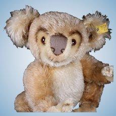 Rare Earliest Model Middle Brother Steiff Koala Bear (NOT!) '53-'58 2 IDs