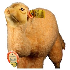Rare Exotic Gorgeous Coloring Steiff Next to Largest Sister Wool Plush Dromedary Camel All ID