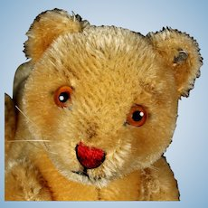 Rare Sweet Little Brother Steiff 5xJointed Lion Cub Jungloewe Wild Cat ID '51-'57 Only