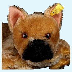 Rare Handsome Steiff Sarras Boxer Dog Hand Puppet 2 IDs