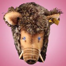 Largest of Three Brothers Rare Steiff Wild Boar Wildschwein All ID