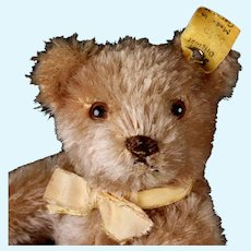 Little Brother Steiff 5xJointed Caramel Original Teddy Bear Earliest Series 2 IDs